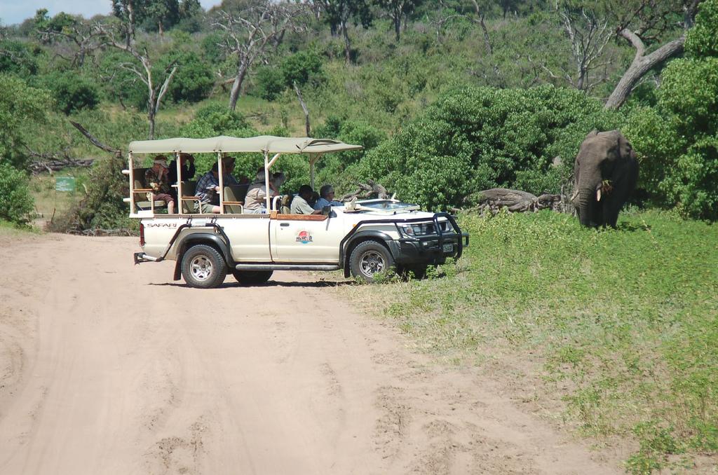 4x4 Open Safari Vehicle sightseeing