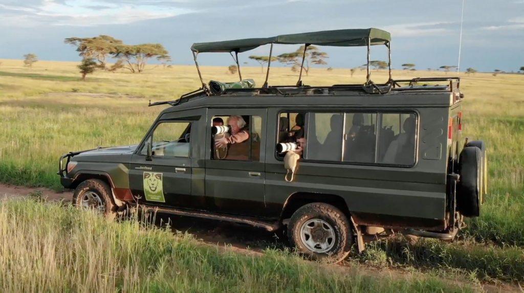 Closed African Safari Vehicles lion sightseeing